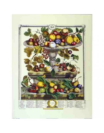 Pèle mèle de fruits Juin 1732