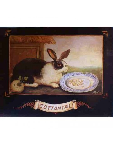 Lapin/cottontail