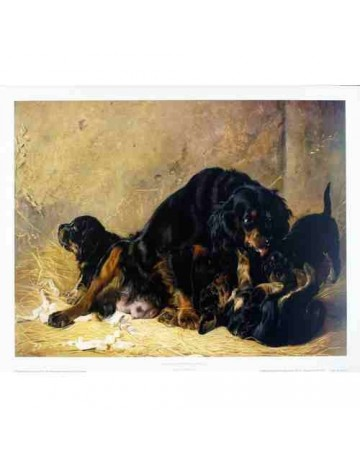 La chienne et ses petits
