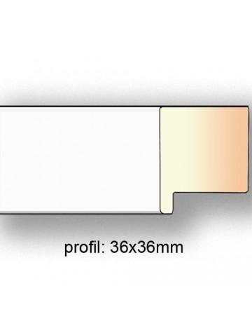 blc3636/21B